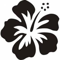 HAWAIIANISCHE BLUME - HIBISCUS Aufkleber